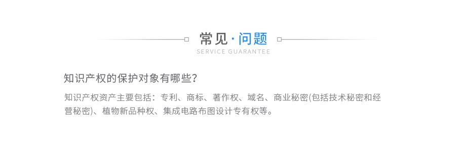 综合性知识产权事务常年法律顾问_03.jpg